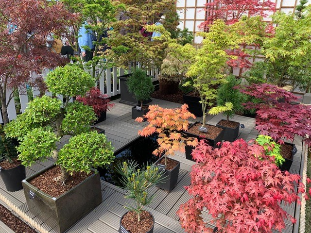 Specialist-Tree-Nursery-For-Sale