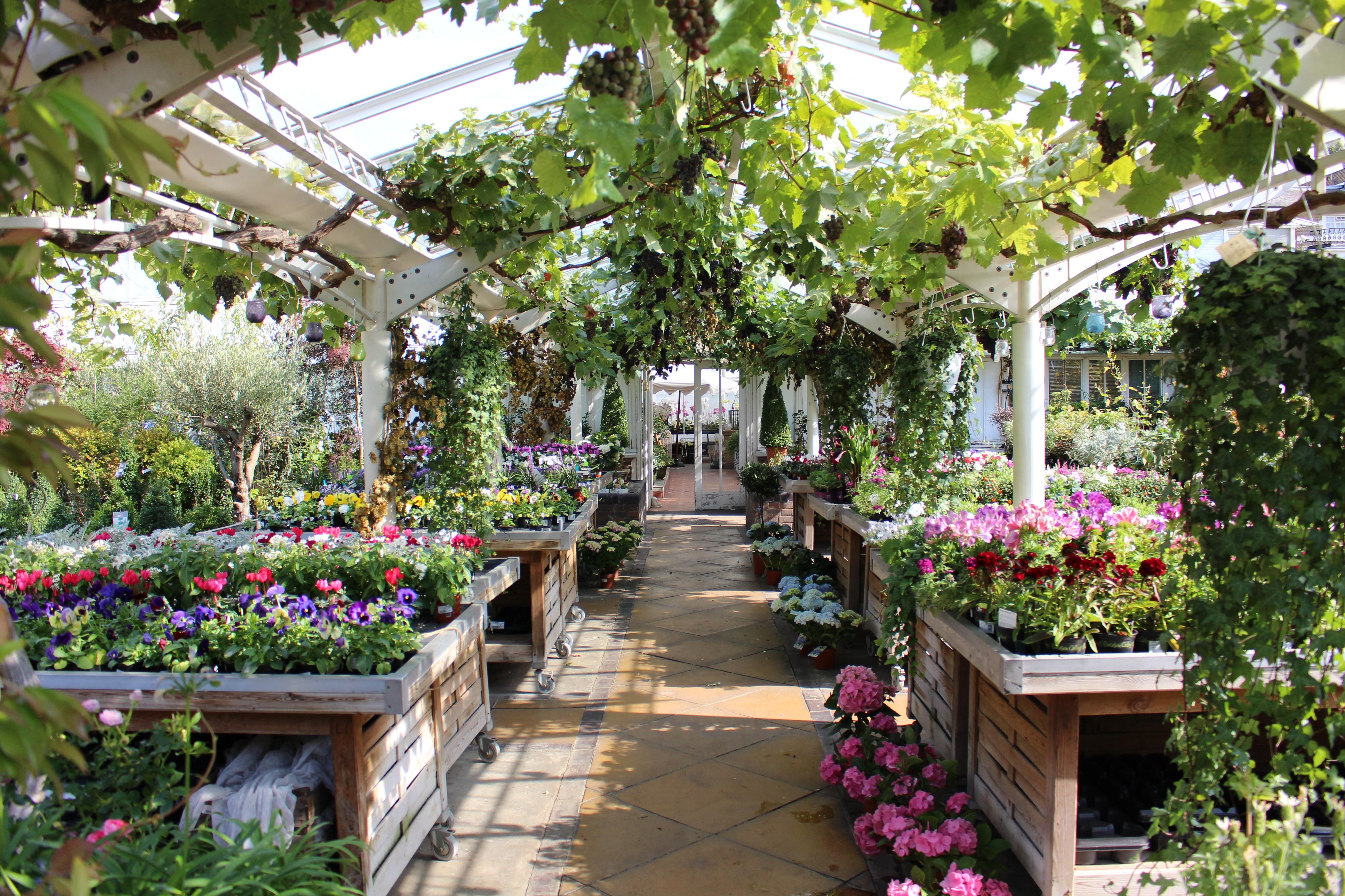 Garden-Centre-Investment