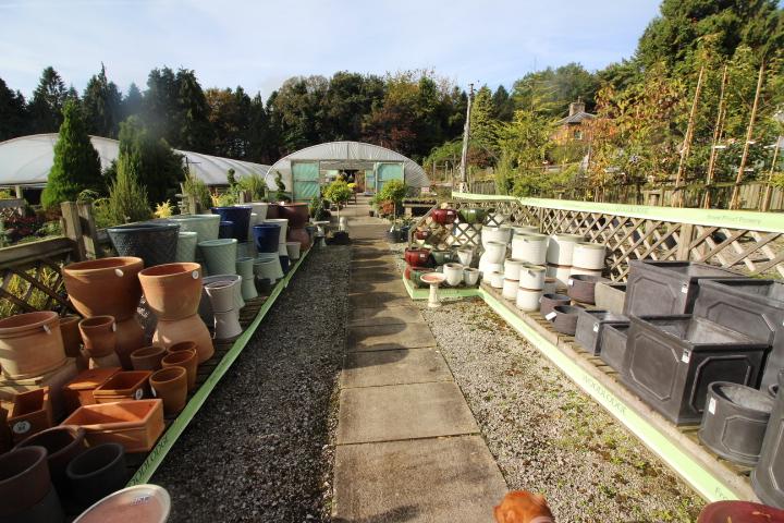 Yorkshire Plant Centre For Sale