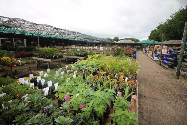 Essex Garden Centre For Sale