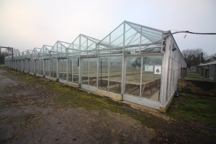Glasshouse Nursery To Let