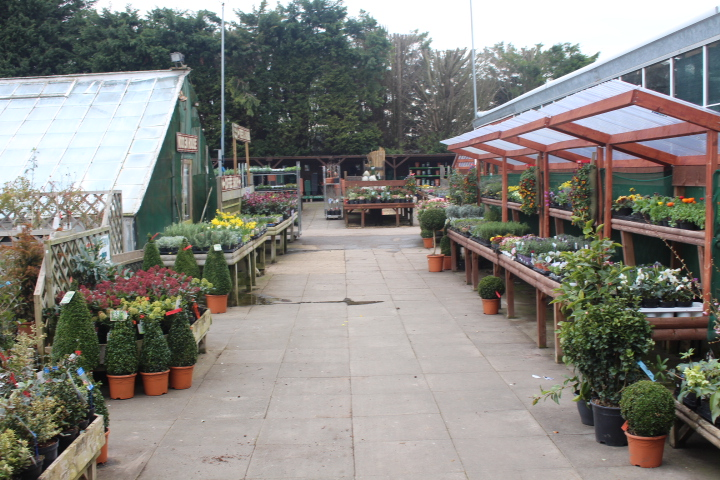 Garden Centre sold by Quinton Edwards