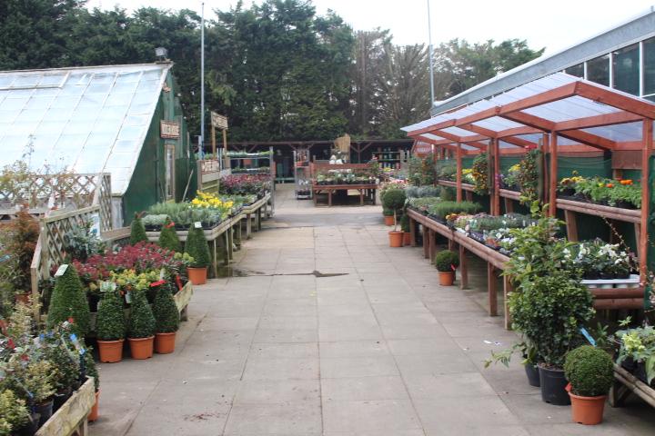 Garden Centre sold by Quinton Edwards