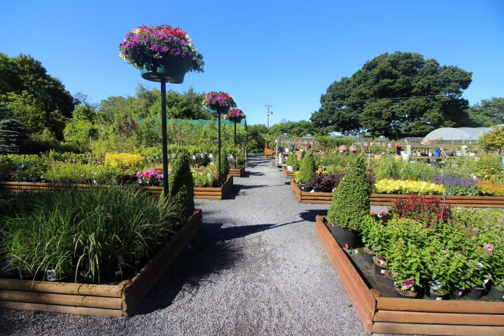 Garden Centres and nurseries for sale